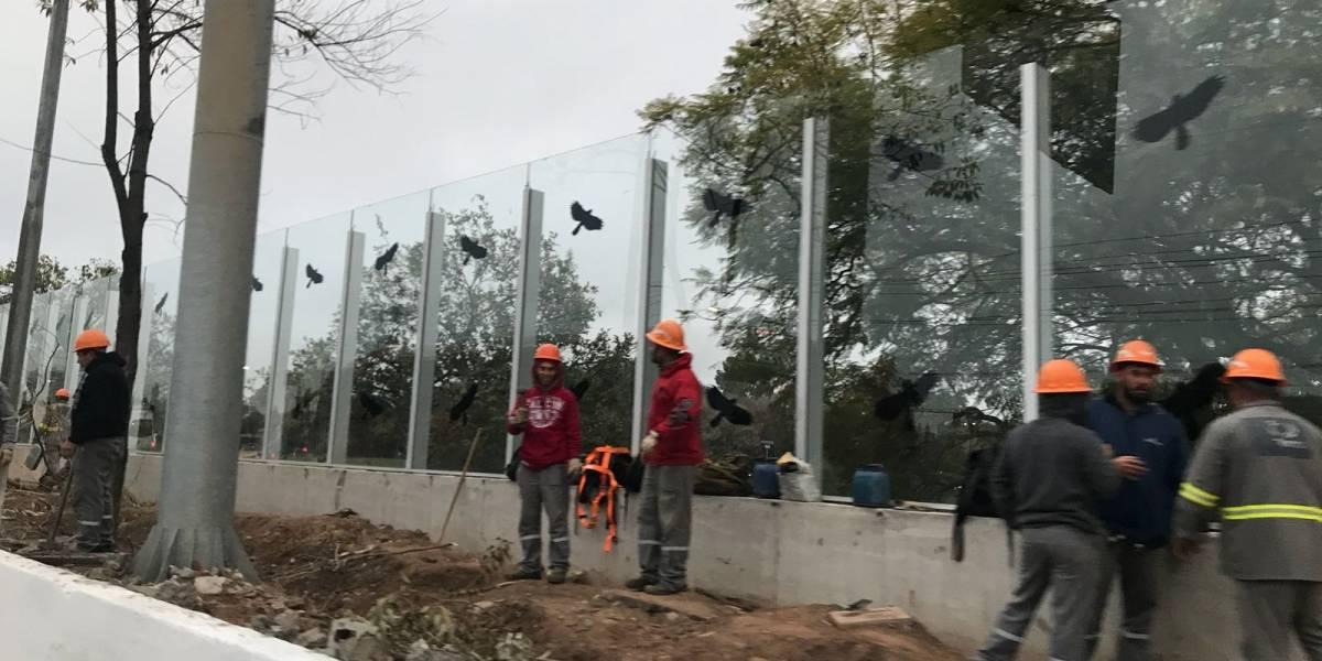 Laudo vê falha de instalação em vidros na Raia da USP