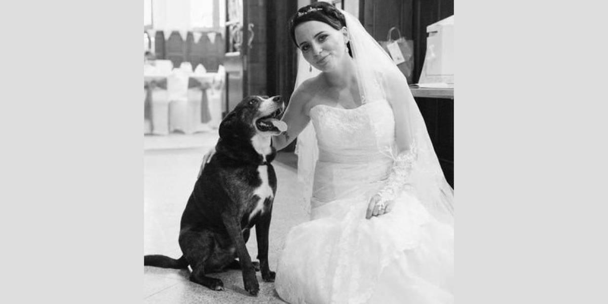 Su perro falleció y ella decidió honrarlo con el mejor tributo