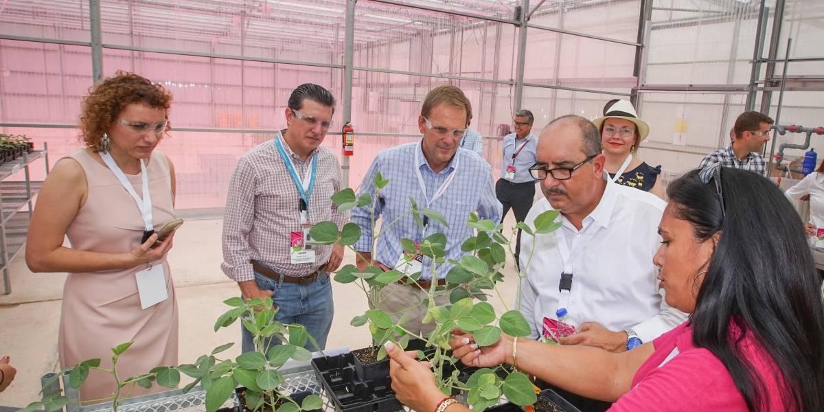 Inaugura Monsanto invernadero en su estación de Juana Díaz