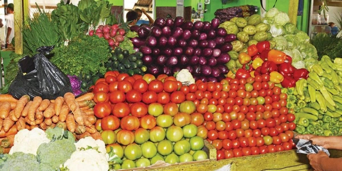 Buscan incrementar competitividad productos agrarios de consumo masivo