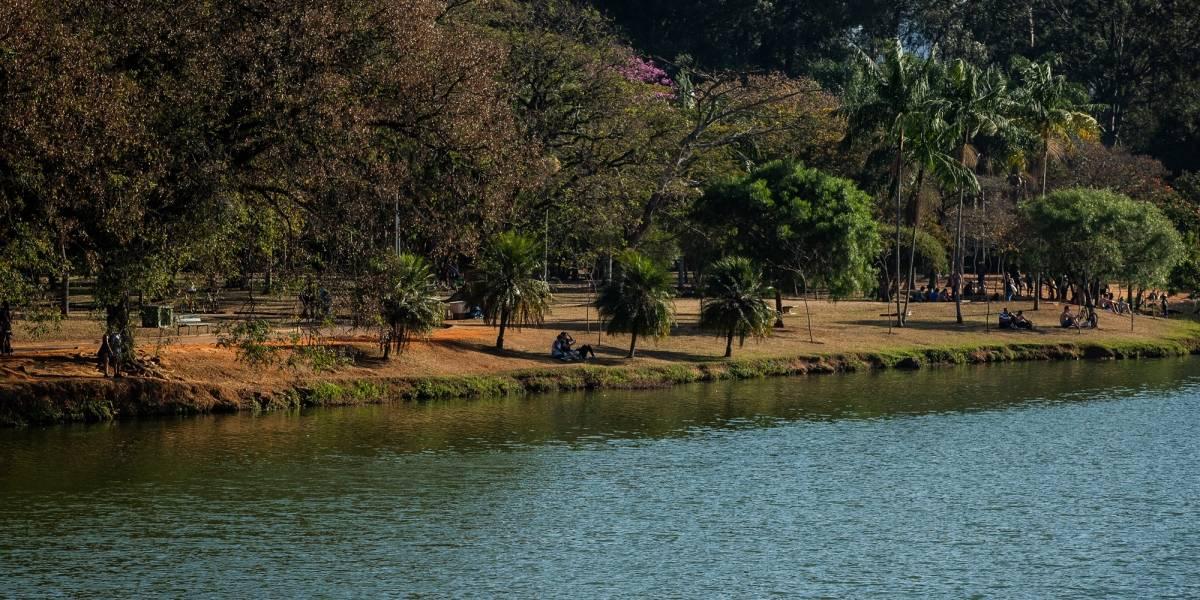 Prefeitura lança novo edital de concessão do parque Ibirapuera por 35 anos