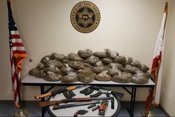 Fue requisado un total de 180 libras de marihuana procesada, 348 plantas y 4 armas de fuego. Los diputados han confiscado 77 armas de fuego durante las investigaciones de marihuana en 125 localidades en los últimos 10 meses.