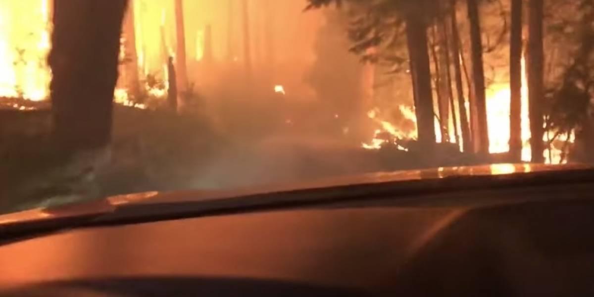 """""""¡No podemos salir!"""": el infernal y dramático escape de un padre y su hijo de un incendio forestal"""