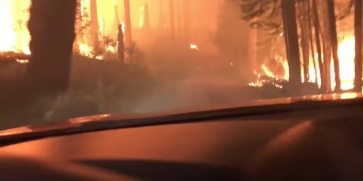 VIDEO. Exploradores graban cómo escaparon de incendio forestal en Montana, EE.UU.