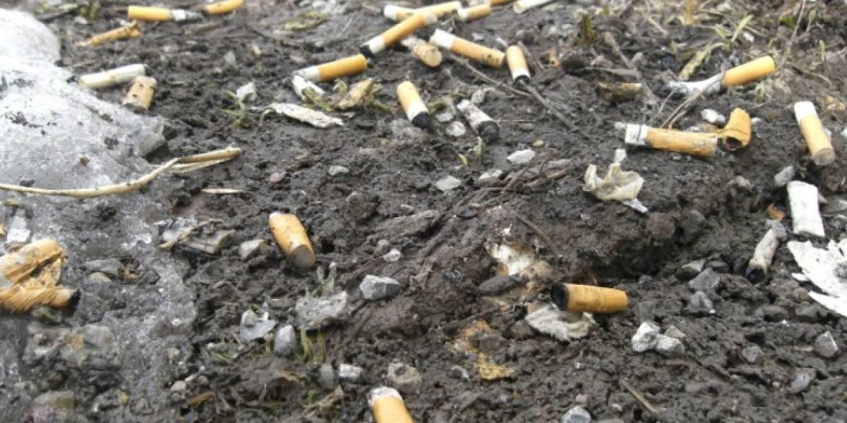 """4.5 mil millones de colillas contaminan al planeta: Greenpeace denuncia """"cáncer"""" medio ambiental"""