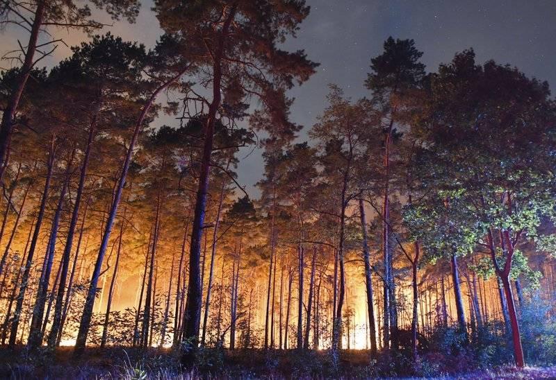 Devastador incendio forestal en Alemania. AP