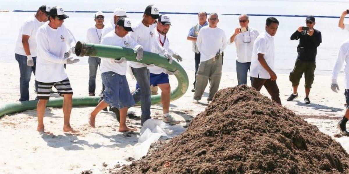 Colocan barreras anti sargazo en playas de Quintana Roo