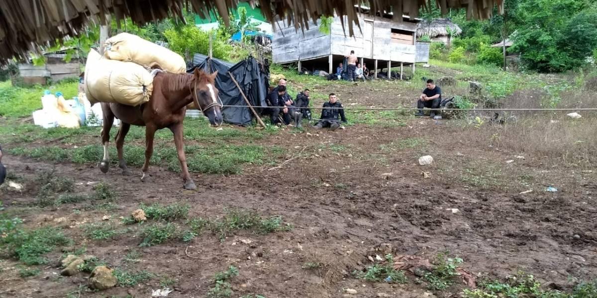 Desalojan a familias instaladas en área protegida en Petén