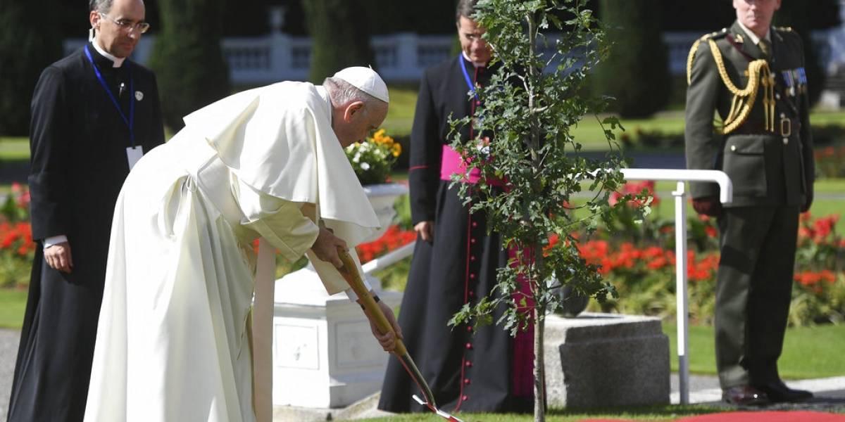 Papa Francisco implora y pide perdón a las víctimas de abusos