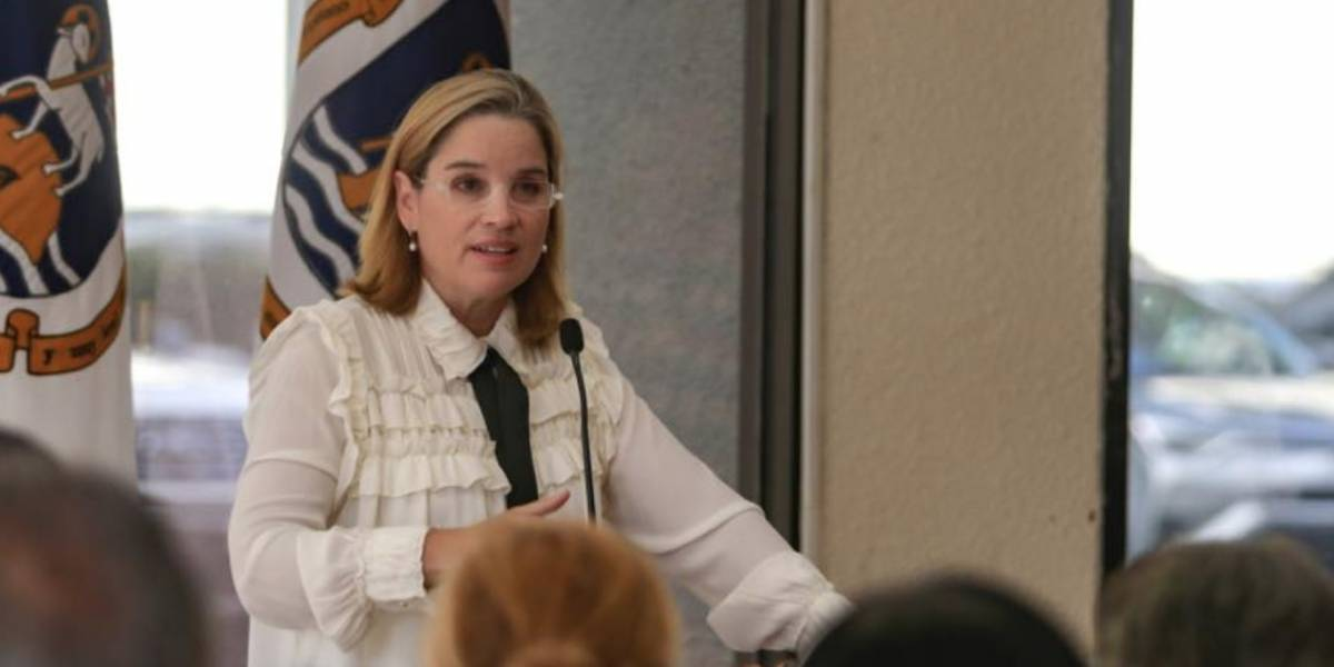 Insisten que Carmen Yulín corra por el PPD para elecciones 2020