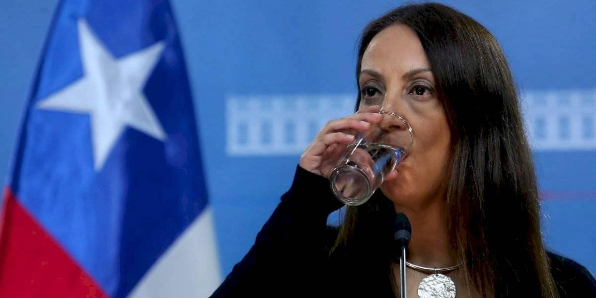 Polémica por dichos de Cecilia Pérez llegó a la justicia: oposición se querelló y pide que citen a declarar a la vocera y oficien al Presidente Piñera