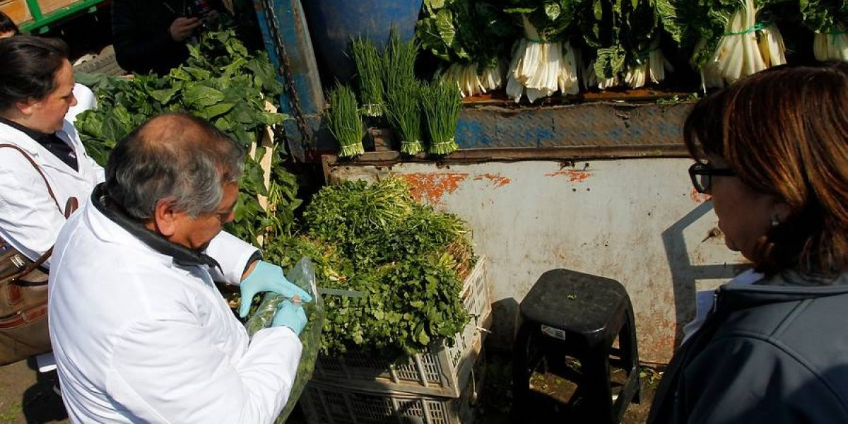 A la caza del cólera: Seremi de Salud inició búsqueda del foco infeccioso en Santiago