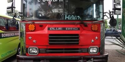 bebehalladobus2-cf6aba5eff903b07a94ddc3af615c134.jpg