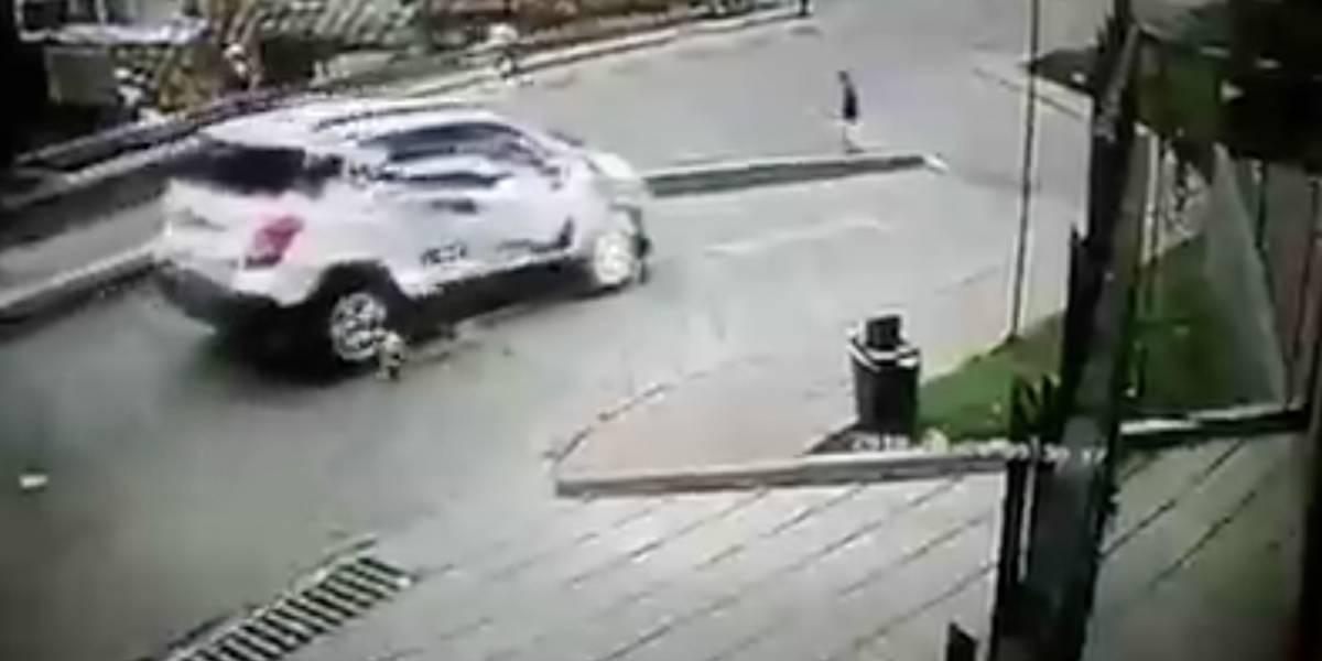 ¡Que crueldad! Conductor le pasó la camioneta por encima a un perrito en el norte de Bogotá