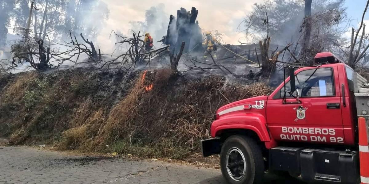 Quito: Esta es la sanción para quien provoque un incendio forestal