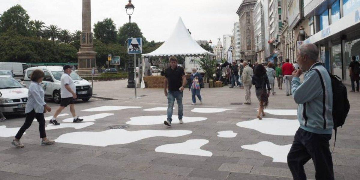 """Galicia estrena su primer """"paso de vaca"""""""