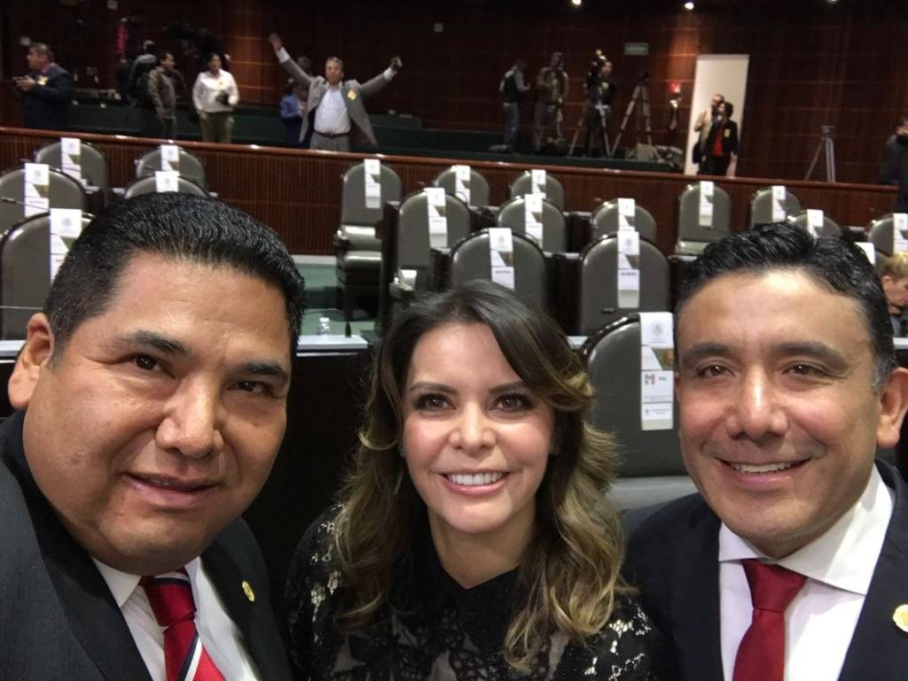 Diputada Laura Barrera (PRI) Foto: Twitter @LauraBarreraF