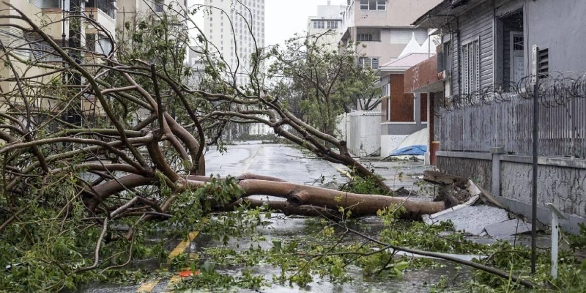 Pto. Rico: deficiencias del gobierno antes y después del huracán María obstaculizaron conteo de muertes