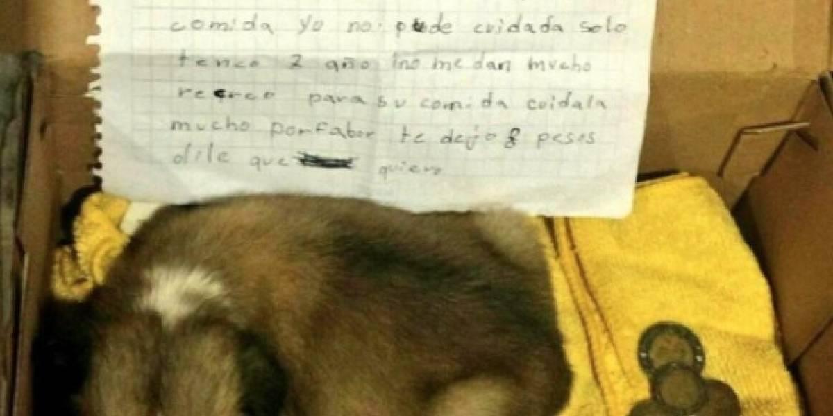La conmovedora carta de niña al ser obligada a regalar su mascota