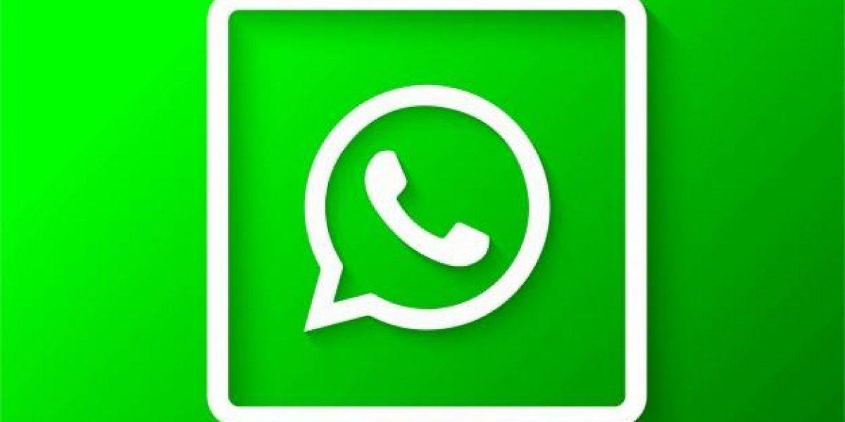 Você sabia que existe uma idade mínima para usar o WhatsApp? Criar uma conta falsa pode caracterizar violação do app