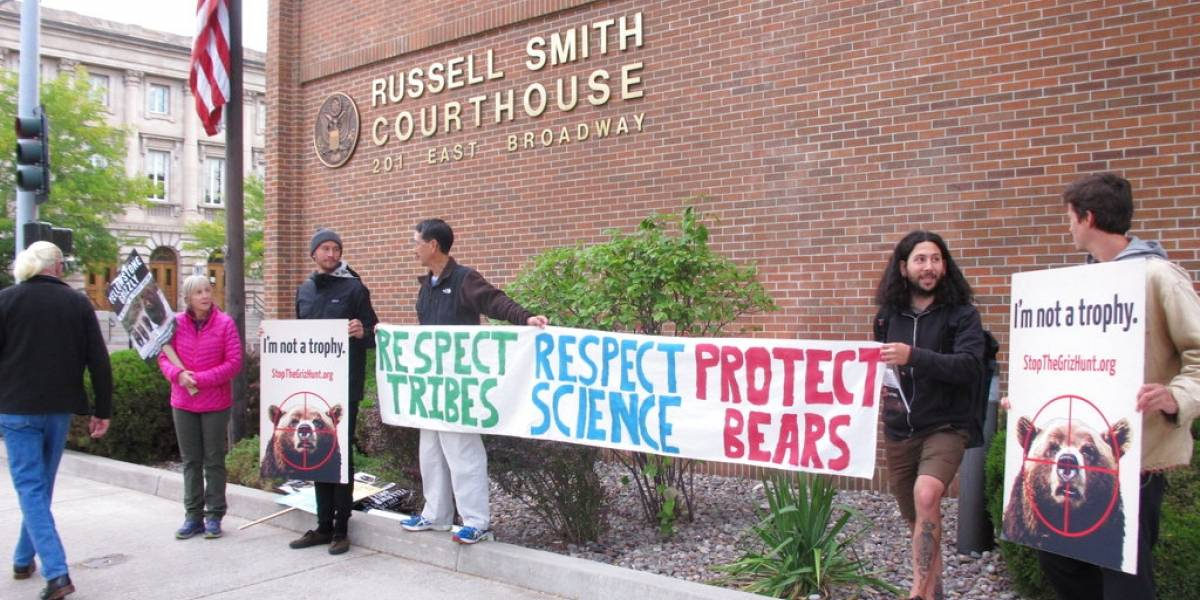 Juez bloquea temporada de cacería de osos grizzly en EEUU