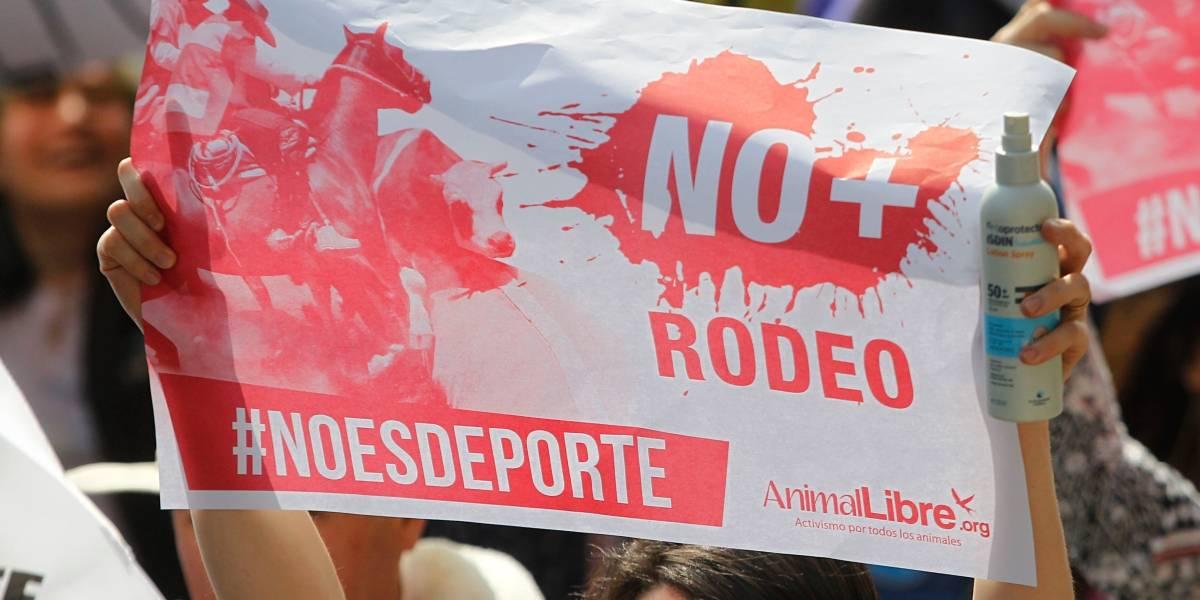 #NoEsDeporte: quinta marcha nacional contra el rodeo reunió 5 mil personas en Santiago y llegó a otras 13 ciudades de Chile