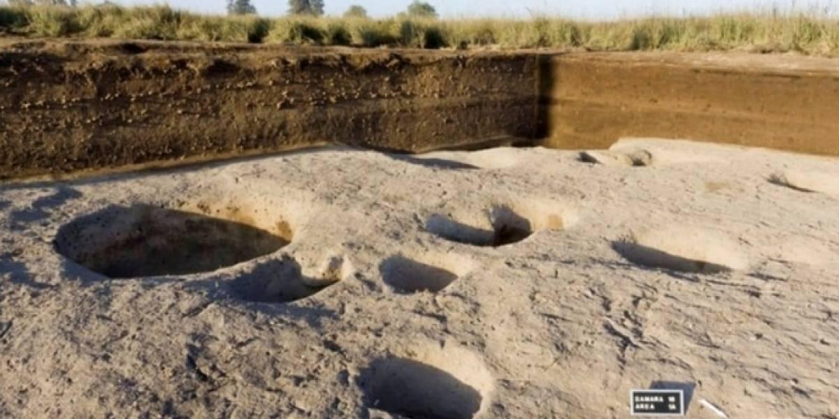 El nuevo hallazgo en Egipto que promete desenterrar secretos de hace más de 2mil 500 años