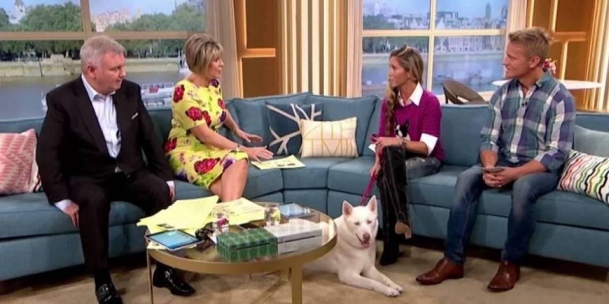 Mujer asegura que su perro es vegetariano y se hace viral tras quedar en ridículo tras ser entrevistada en vivo