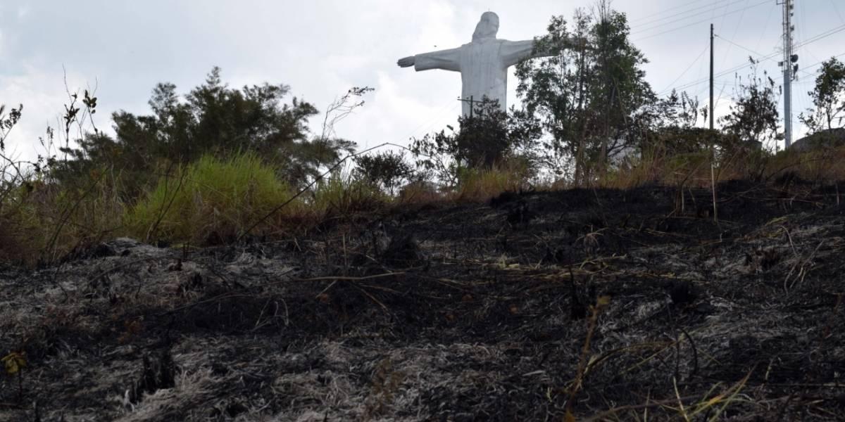 Autoridad ambiental de Cali recomienda no sembrar árboles en los cerros incendiados