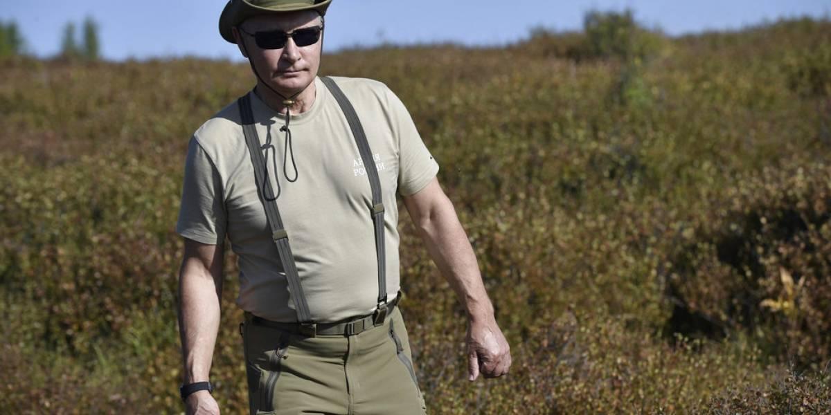"""""""Hasta los osos me temen"""": La televisión rusa tiene un nuevo programa semanal dedicado a adular a Putin"""