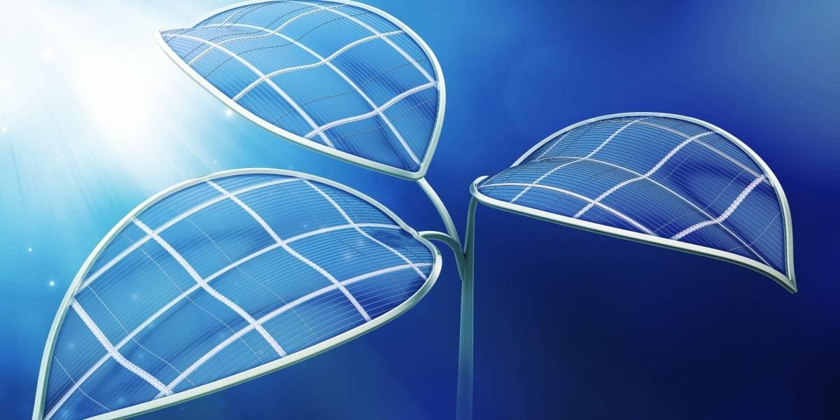 Resultado de imagen de Científicos crean método para producir energía mediante una fotosíntesis artificial