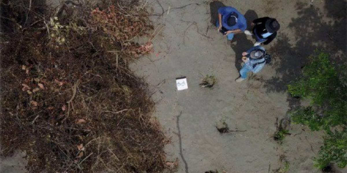 Realizan macabro hallazgo en fosa clandestina en Veracruz