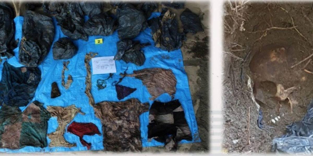 Hallan restos de al menos 166 personas en fosas clandestinas en Veracruz