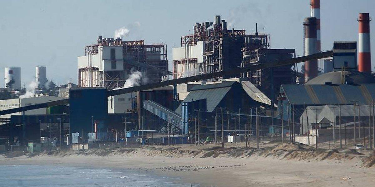 Apagaron nube tóxica de Quintero con petróleo: ahora estudian interpelar a ministra del Medio Ambiente