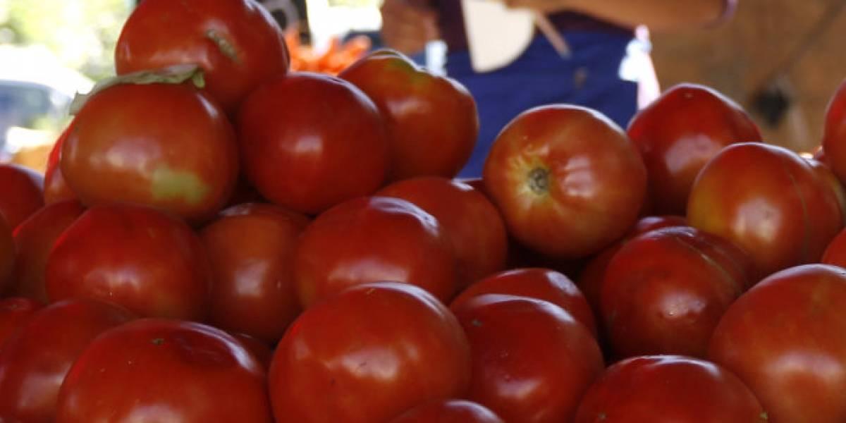 """¿Un """"18"""" sin ensalada a la chilena? IPC de agosto llega al 0,2% y los tomates se anotan entre las mayores alzas"""