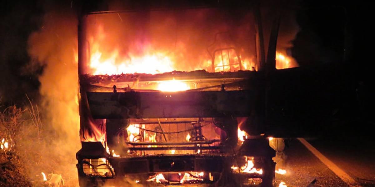 Nuevo ataque incendiario en La Araucanía: encapuchados queman camión forestal en Cañete e intimidan a balazos a conductor