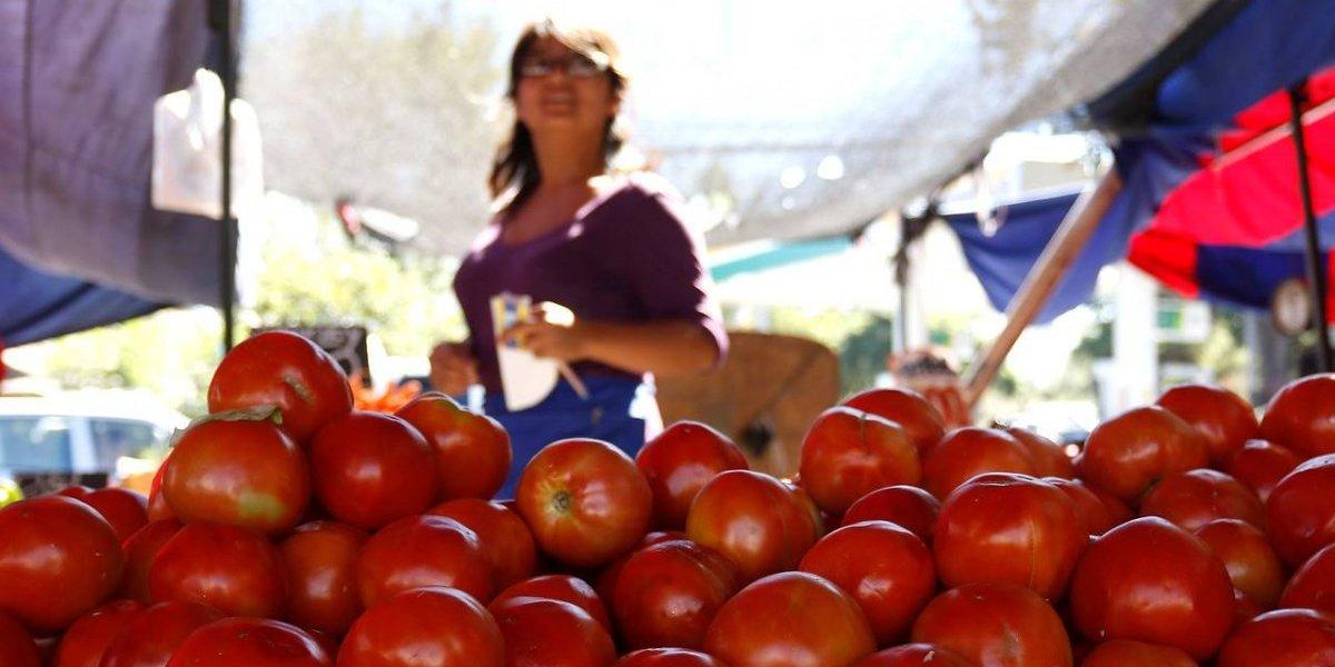 ¿Por culpa de la ensalada a la chilena?: por qué sube tanto el precio del tomate cerca de Fiestas Patrias