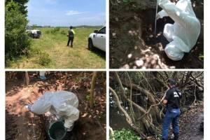 Ubican fosa clandestina con 166 cráneos en el estado mexicano de Veracruz