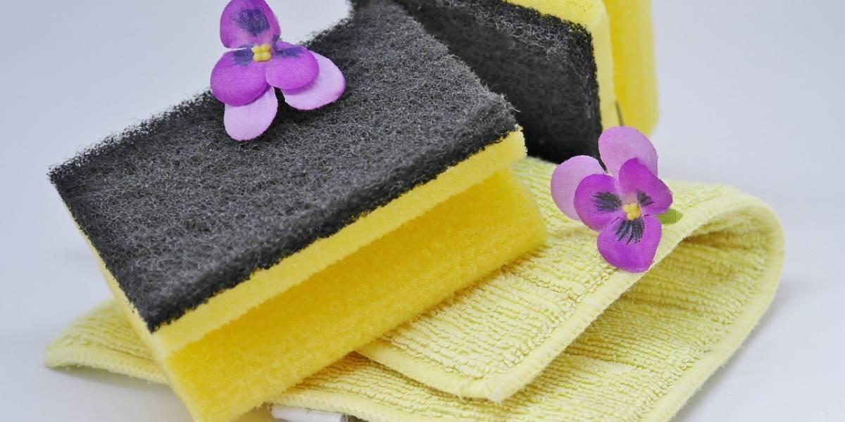 Fibra lavaplatos puede contener más gérmenes que una coladera de la calle