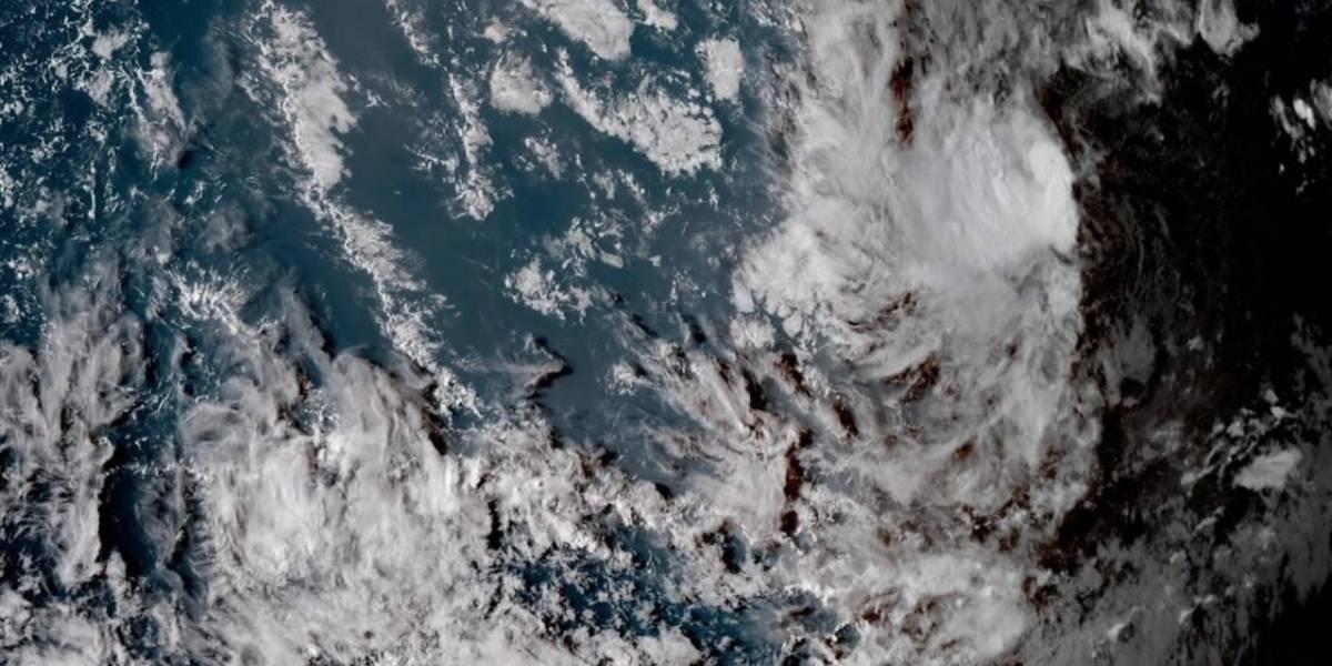 Tormenta Florence se convertirá en huracán tras su paso por el Atlántico