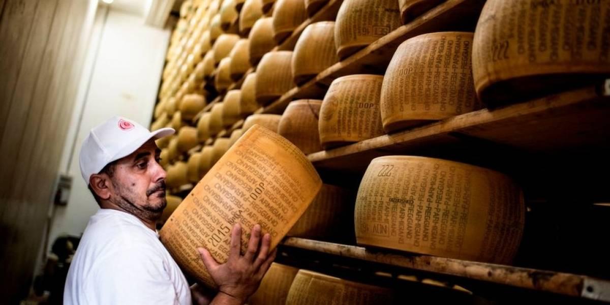"""O que o queijo """"mais velho"""" do mundo revela sobre a intolerância à lactose em humanos"""