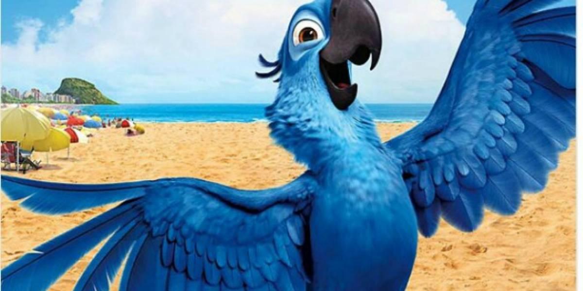 Declaran extinto al pájaro que inspiró la película 'Río'