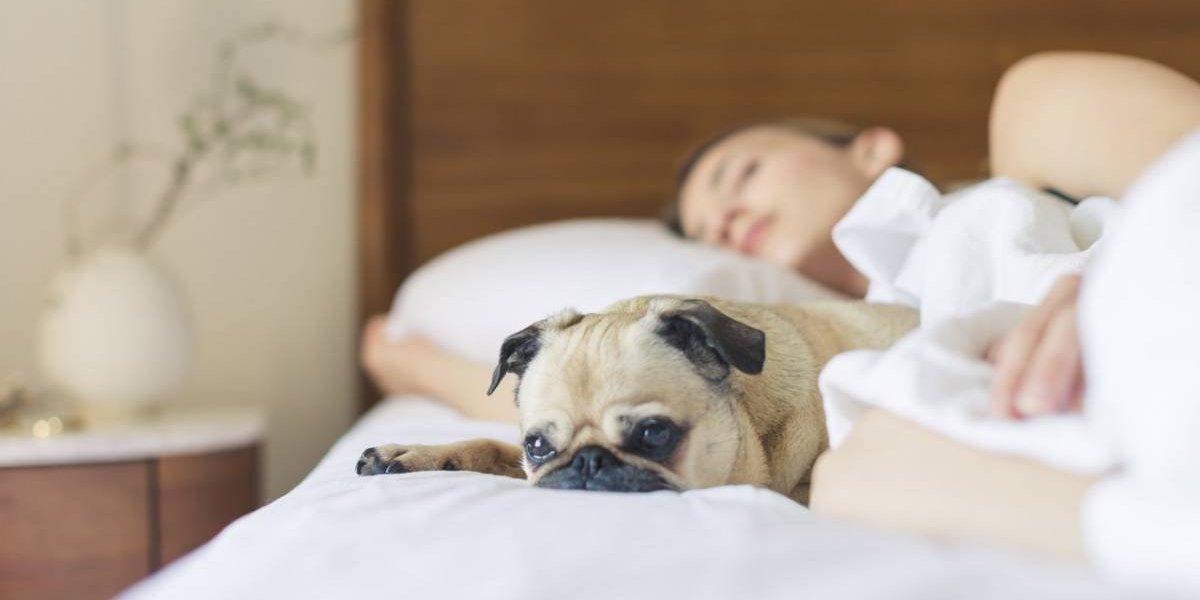 Consejos para dormir mejor por las noches