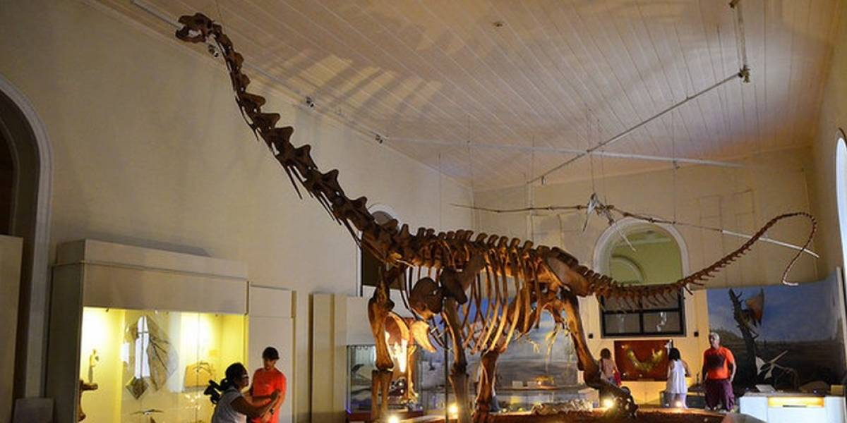Mais pobres eram quase metade dos visitantes do Museu Nacional