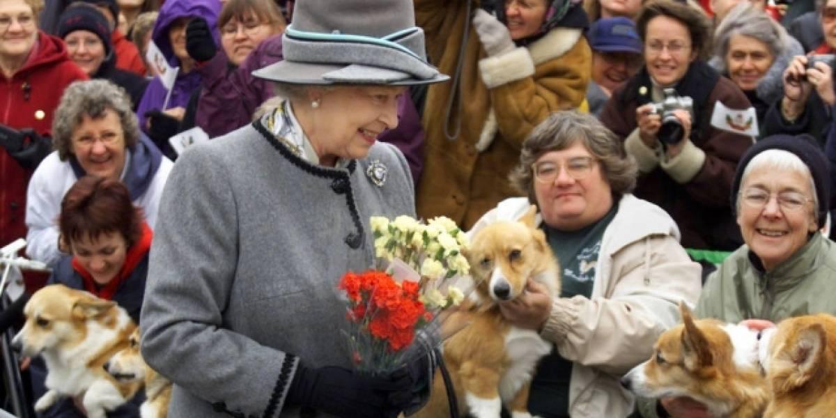 Coroa Britânica: O grande amor da família real pelos cães