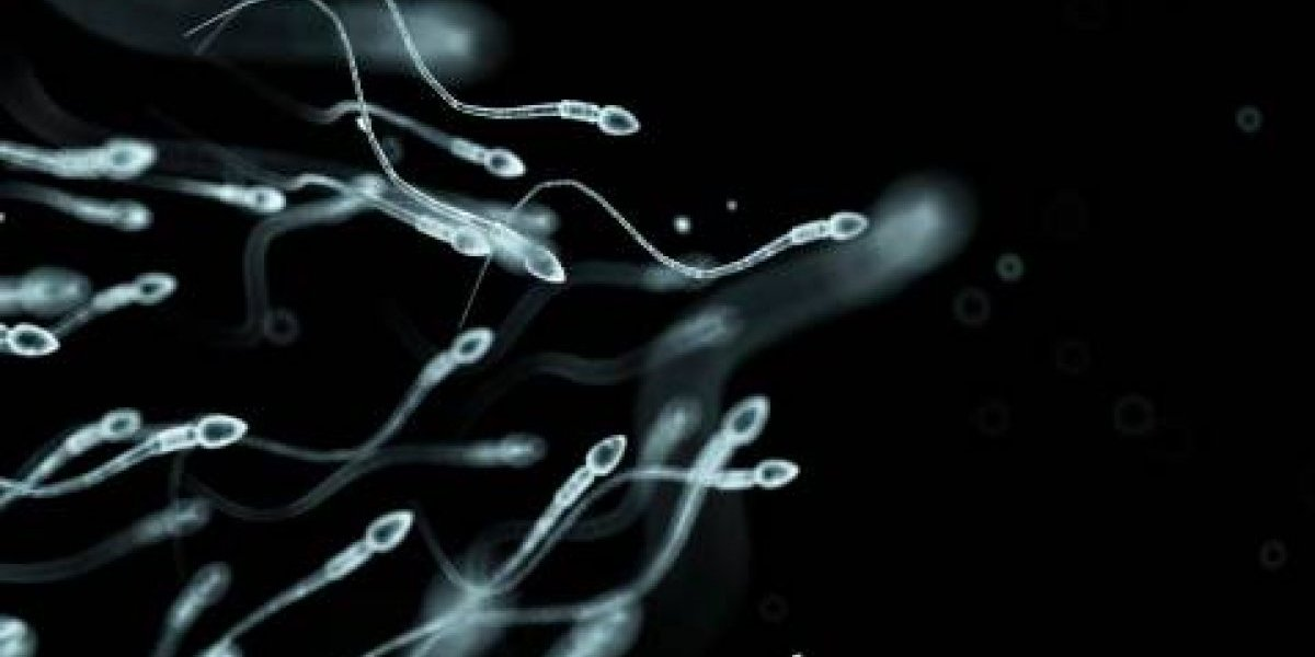 Los hombres que sufren vergüenza en secreto por no producir espermatozoides