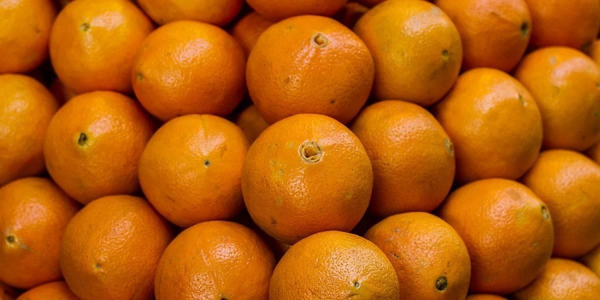 El extraño fenómeno que tiene impactada a la comunidad científica: naranja se coloca morada y nadie logra descifrar el misterio