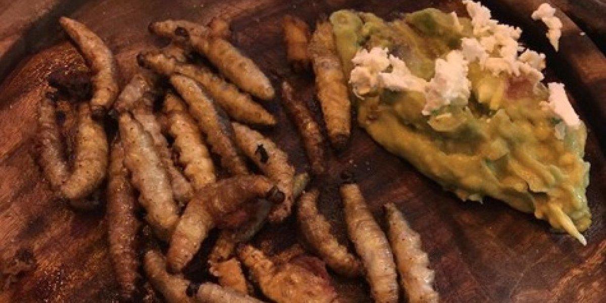 15 platillos de la comida mexicana que muchos no se atreven a probar