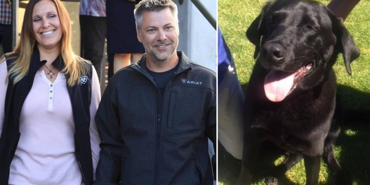 La perra labrador que salvó a un hombre de una condena de 50 años de prisión por presunto abuso sexual infantil