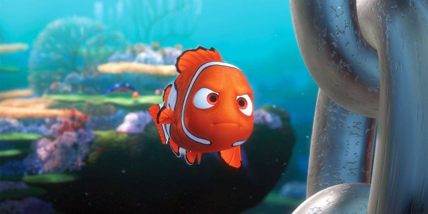 Buscando a Nemo: decodifican el genoma del pez payaso